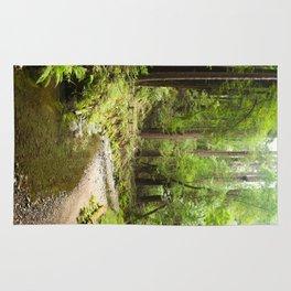 Muir Woods Creek Rug