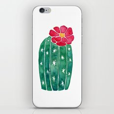 cactus with little red flower iPhone & iPod Skin