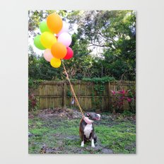 Party Pitbull Canvas Print