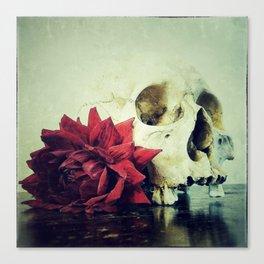 Vanitas Blood Red Canvas Print