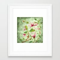 magnolia Framed Art Prints featuring Magnolia by CatDesignz