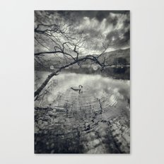 Early morning, Coniston Water Canvas Print