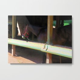 Horse in shelter 3 Metal Print