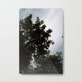 great sky Metal Print