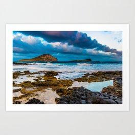 Makapuʻu Art Print