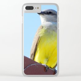 Rivaling the Sun Clear iPhone Case