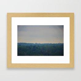 Birds in the sky Framed Art Print