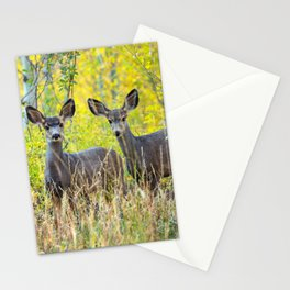 Double Take - Pair of Young Mule Deer Hiding in Autumn Aspens Stationery Cards