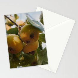 Green Apples on a Tree Stationery Cards
