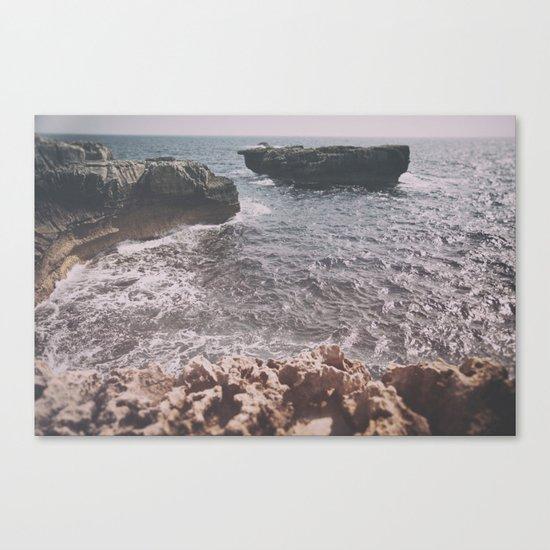 rox Canvas Print