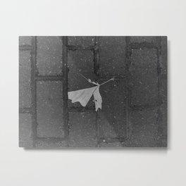 leave and let die, dead leaf, sidewalk urban photography Metal Print