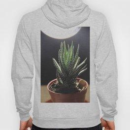chill plant Hoody