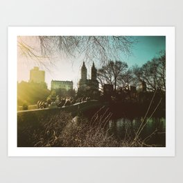 Sunshine in Central Park. Art Print