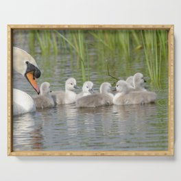 Swan and cygnets Serving Tray