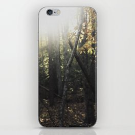Forest 001 iPhone Skin