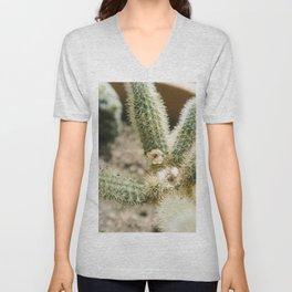 cholla cactus Unisex V-Neck