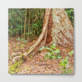 A firm grip on mother earth Metal Print