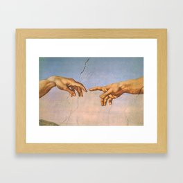 Michelangelo's Creation Framed Art Print