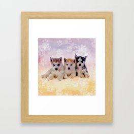 Siberian Husky Puppies Framed Art Print