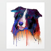 border collie Art Prints featuring Border Collie by Marlene Watson