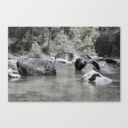 Riverside NO1 Canvas Print