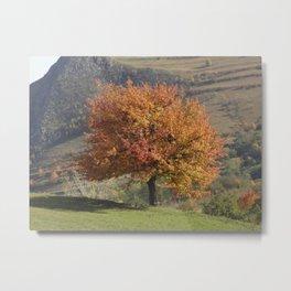 Transylvanian Autumn Metal Print