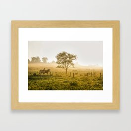 Two Horses at Sunrise Framed Art Print