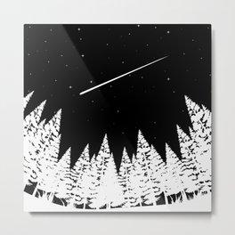 Meteors Astronomy Metal Print