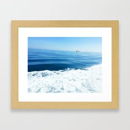 Sailing on the Pacific Ocean Framed Art Print