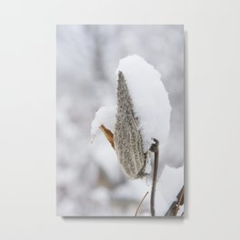 Snow Covered Pod Metal Print