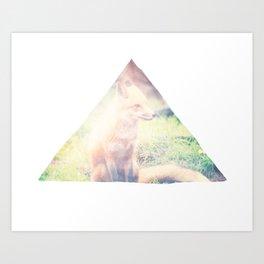Sunny Fox Art Print
