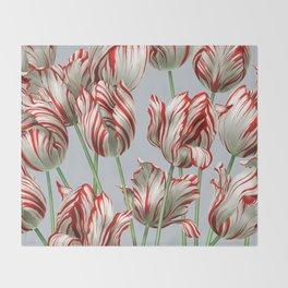 Semper Augustus Tulips Throw Blanket