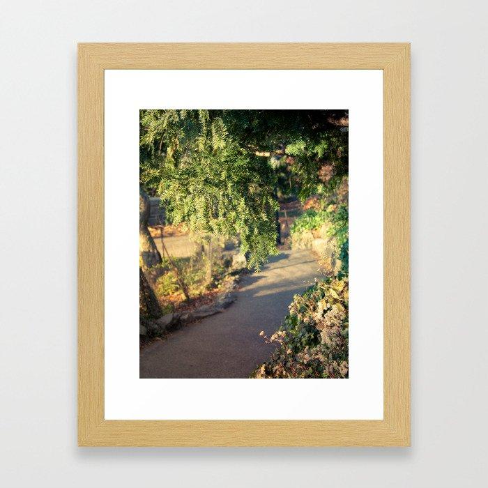 Cloisters fairytales Framed Art Print