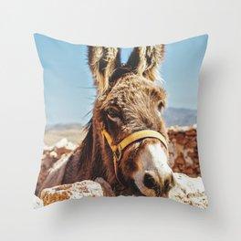 Donkey photo Throw Pillow