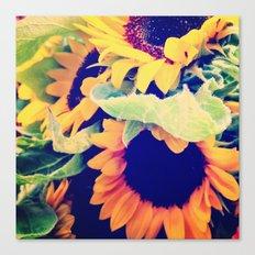Always Sunny Sunflowers Canvas Print