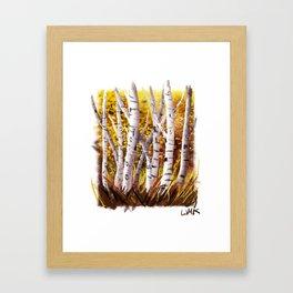 Autumn Birch Framed Art Print