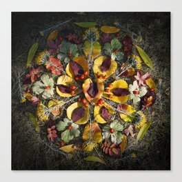 Nature Mandala: October 1 Canvas Print