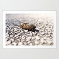 insect Art Prints featuring Insect by Yannik Meka