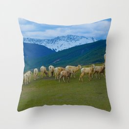 Female Mountain Goats on Old Fort Point in Jasper National Park, Canada Throw Pillow