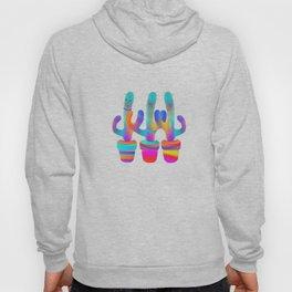 Cactus Rainbow 02 Hoody