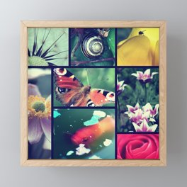 Nature pictures Framed Mini Art Print