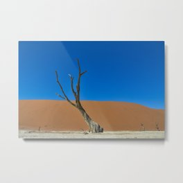 Lone desert tree on an Ancient River bed Metal Print