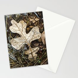 Fallen Autumn Leaves 10 Stationery Cards