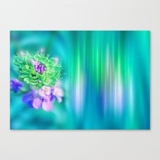 The Sound of Light and Color - MINT Canvas Print