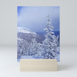 Winter day 27 Mini Art Print