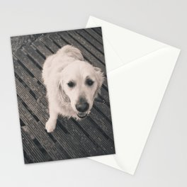 Puppy Love B&W Stationery Cards