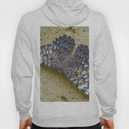 Turquoise and Sand Butterfly by Teresa Thompson Hoody