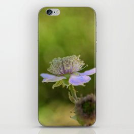 European dewberry iPhone Skin