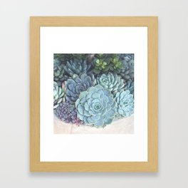Succulent Container Framed Art Print