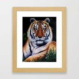 "'Tigers Eyes"" Framed Art Print"